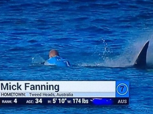 Terrifying video shows one of the best surfers in the world fighting off a shark attack