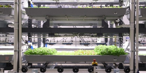 This indoor farm in New Jersey can grow 365 days a year and uses 95% less water than a typical farm