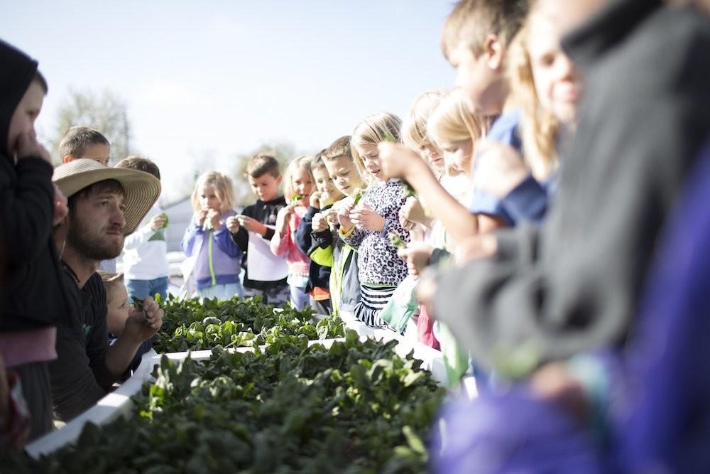 The Farm to Table Handbook: Farm to School - cover