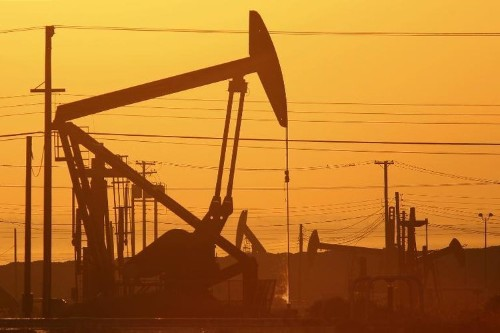 OPEC unlikely to lose oil influence to US shale: analysts