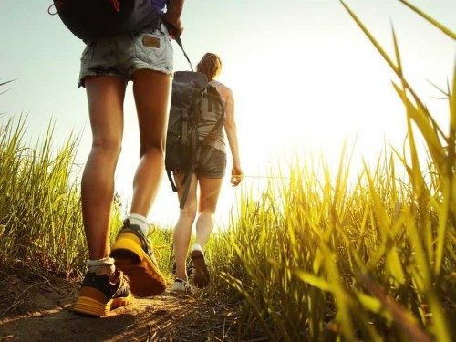 Why Walking Makes You More Creative