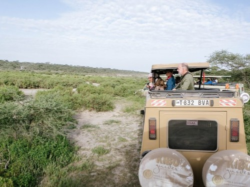 I spent 5 days on a Tanzanian safari and saw wild lions, elephants, and rhinos — but it made me realize there are 2 factors that can make or break your trip