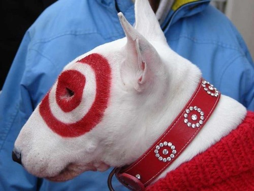 Target 'Brushed Off' Security Concerns 2 Months Before 40 Million Credit Card Numbers Were Stolen