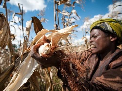 30 Uplifting Photos Of Entrepreneurs In The Developing World
