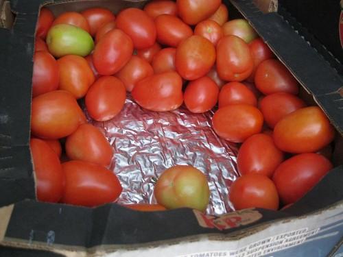 Authorities seize $7 million in cocaine hidden inside a tomato shipment