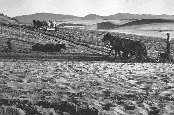Amazing images of San Francisco before it was a city - Business Insider