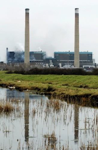 Europe's most popular source of 'renewable' energy is worse for the planet than coal