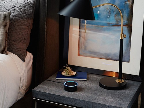 My favorite Alexa skill has made the $50 Echo Dot worth every penny - Business Insider