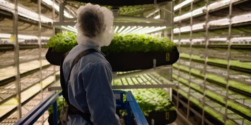 This vertical farm in Newark, New Jersey, could be the key to solving some of agriculture's biggest problems