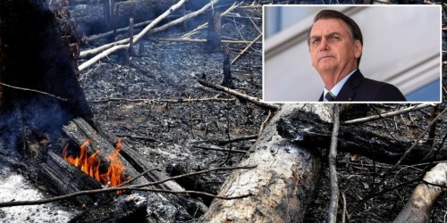 Brazil's president baselessly claimed that NGOs set the Amazon on fire on purpose to make him look bad