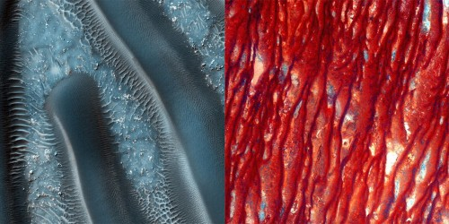 QUIZ: Are these pictures of Mars or Earth?