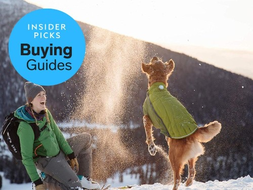 The best snow jackets for dogs - Business Insider