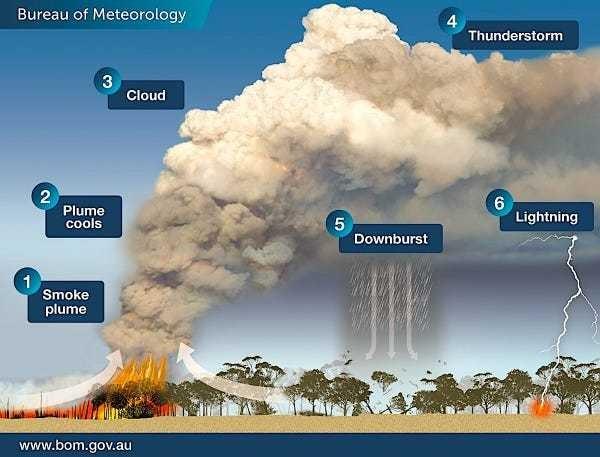 Australia bushfires generate pyrocumulonimbus thunderstorm clouds - Business Insider