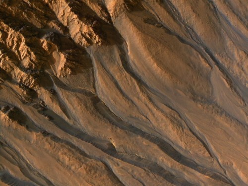 These vein-like features stretched across the surface of Mars can tell us a lot about the planet