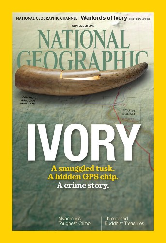 National Geographic put a GPS tracker inside a fake ivory tusk — here's where it went
