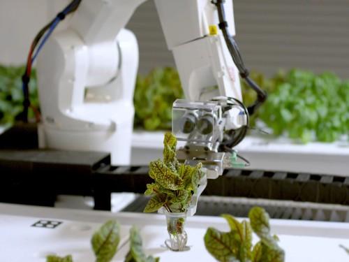 This robotic farm uses 90% less water than traditional farming