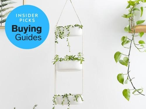 The best indoor herb gardens you can buy