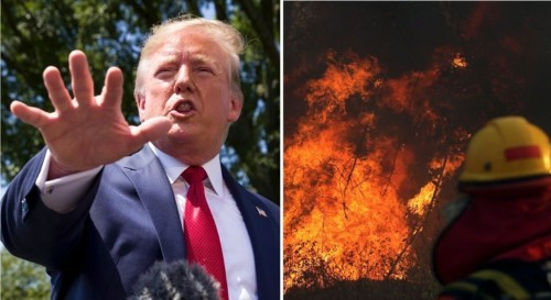 Trump praises Bolsonaro, says US can 'help' stop Amazon fires