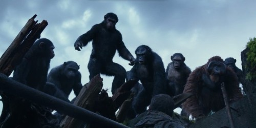 New 'Dawn Of The Planet Of The Apes' Trailer Shows All-Out War