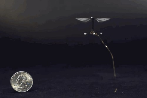 In 10 Years, Tiny Flying Robots Could Pollinate Crops Instead Of Real Bees