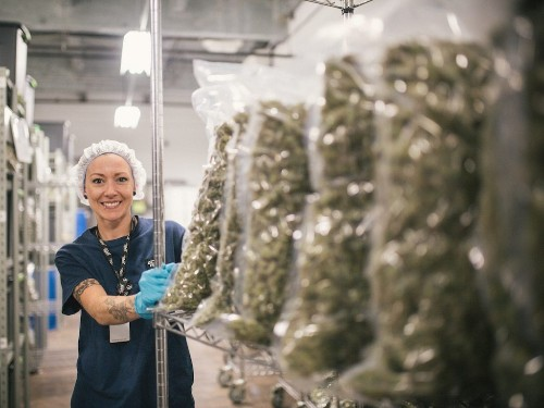 Canadian cannabis companies are whipping around after report says workers may face lifetime travel ban to US (TLRY, CGC, CRON)