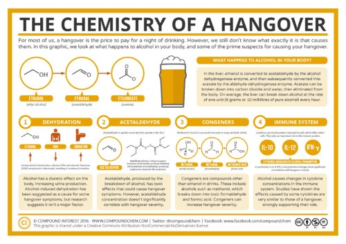 Everything you'll ever need to know about hangovers