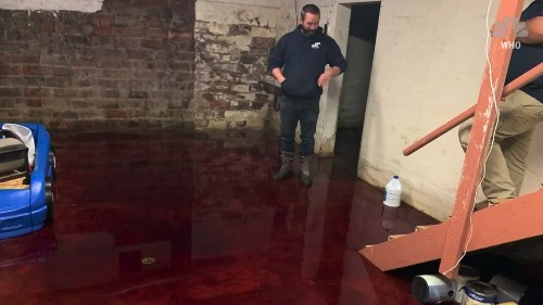Iowa family came home to flooded basement of animal blood and remains - Business Insider