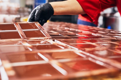 Chocolate could be extinct by 2050, but some companies think genetic engineering could save their supply
