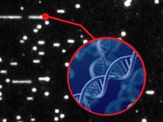 First close-up footage DNA replication has shocking surprise - Business Insider