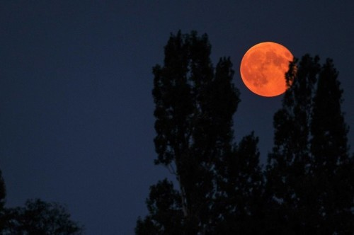 'Super blood moon' to give stargazers a rare show