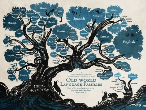 This tree beautifully reveals the relationships between languages