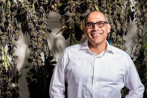 Canndescent $27.5 million Series C pitch deck: California cannabis