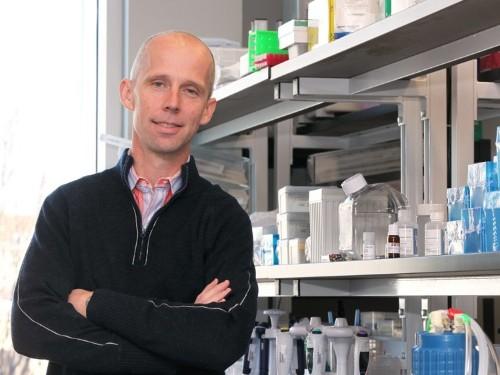 Biotech Bluebird Bio suggests installment plan for gene therapy LentiGlobin