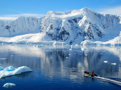 'We'll never forget': What it's like for tourists in Antarctica