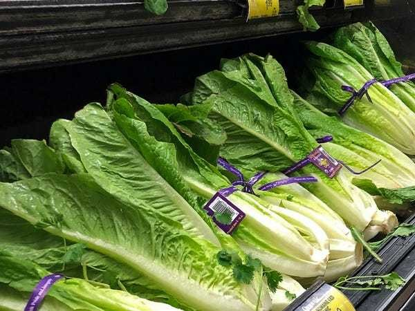 The romaine-linked E. coli outbreak is officially over, federal officials say - Business Insider