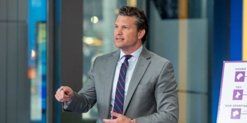 Fox News host Pete Hegseth told viewers to buy more AR-15s days after New Zealand mosque shooting that killed 50