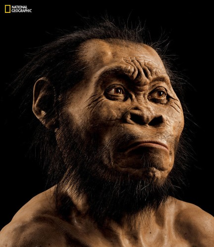 Scientists are raising important questions about the discovery of a new human ancestor