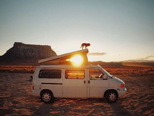 Photographer and dog road-tripping US for years