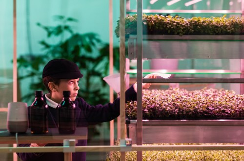 Ikea has debuted an indoor farm that grows greens 3 times as fast as in a garden