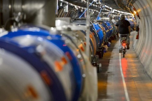 New particle in physics may be found this year