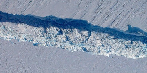 Rapid collapse of Antarctic glaciers could wipe out every coastal city in the world by the end of this century