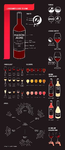How To Sound Like A Wine Expert In 9 Basic Steps