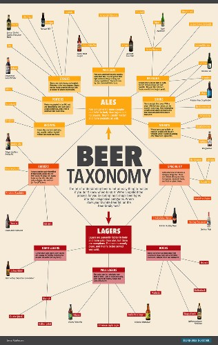 Everything you need to know about beer, in one chart