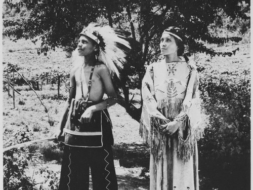 Why so many Americans think they're part Cherokee