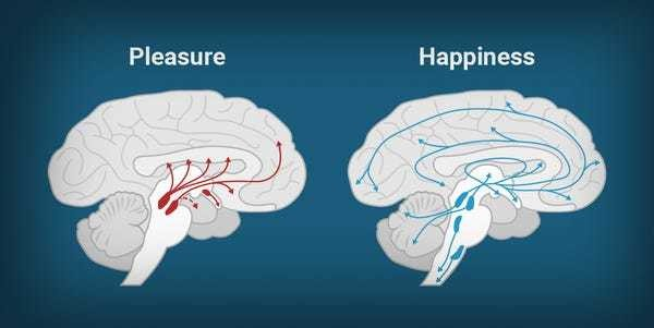 Why our phones are making us miserable: pleasure isn't happiness - Business Insider