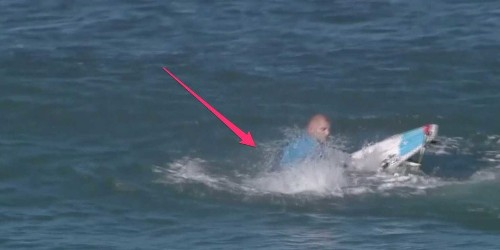 Marine biologist explains why the pro surfer attacked by a shark didn't actually get bit