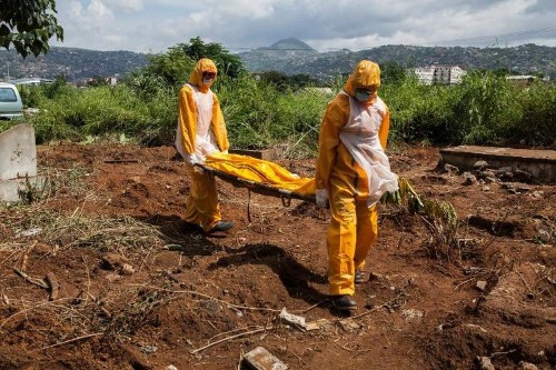 Ebola death toll hits 4,033: WHO