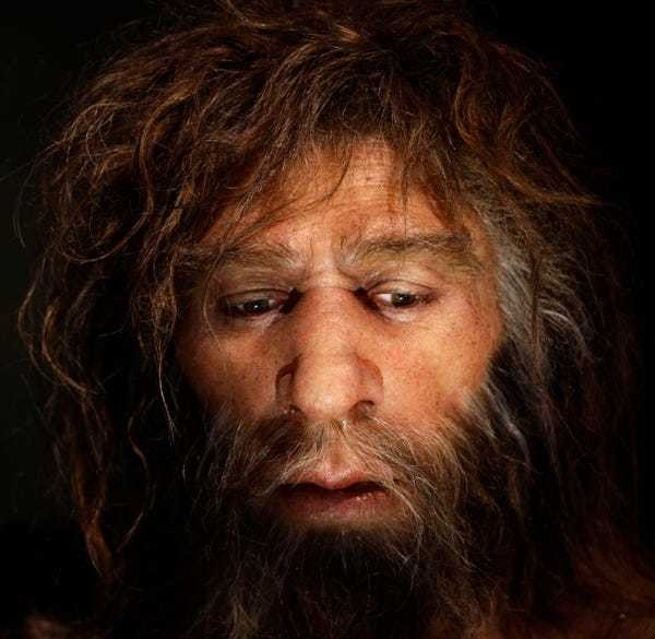 Climate change forced Neanderthal ancestors to become cannibals - Business Insider