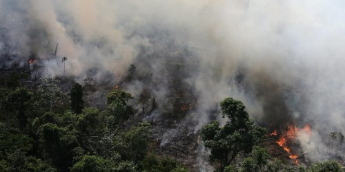 Map shows much of South America on fire, including Amazon