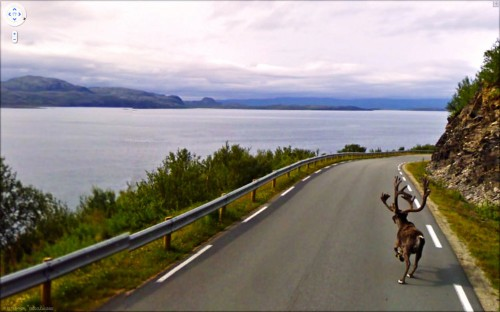 26 Stunning Images You Won't Believe Were Found On Google Street View